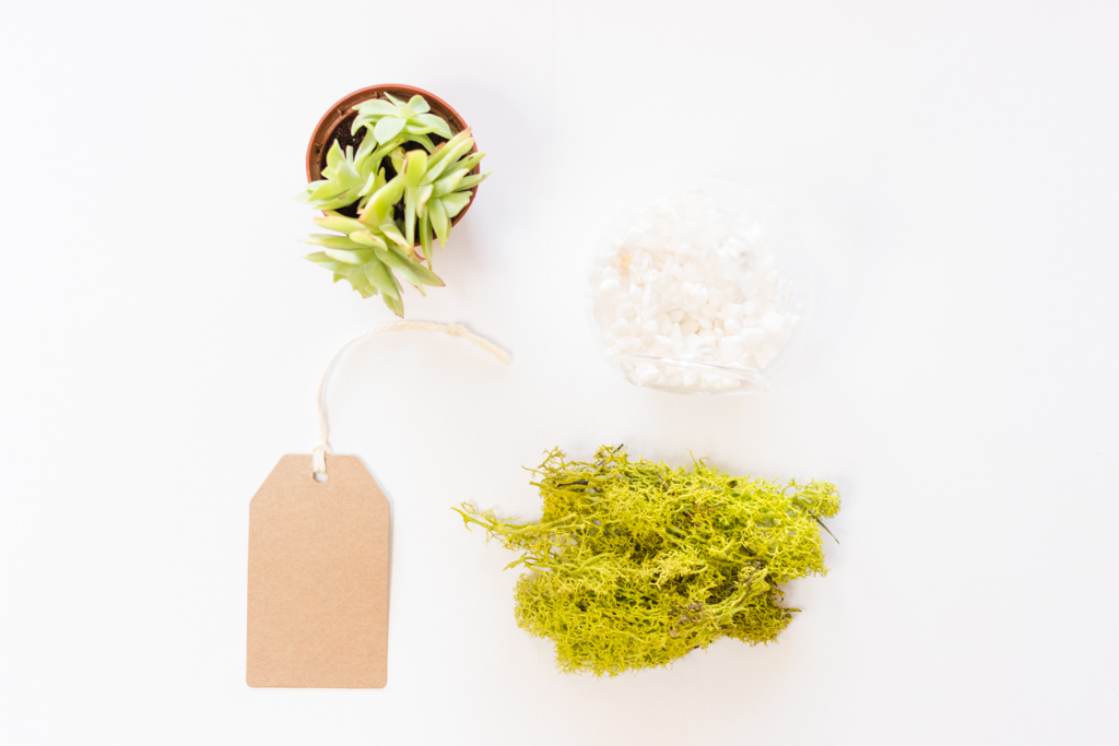Comment bien accueillir ses invités - Ma collab' LMSLE x Ferrero Rocher | DiY marque-place terrarium | Blog mariage La Mariée Sous Les Etoiles