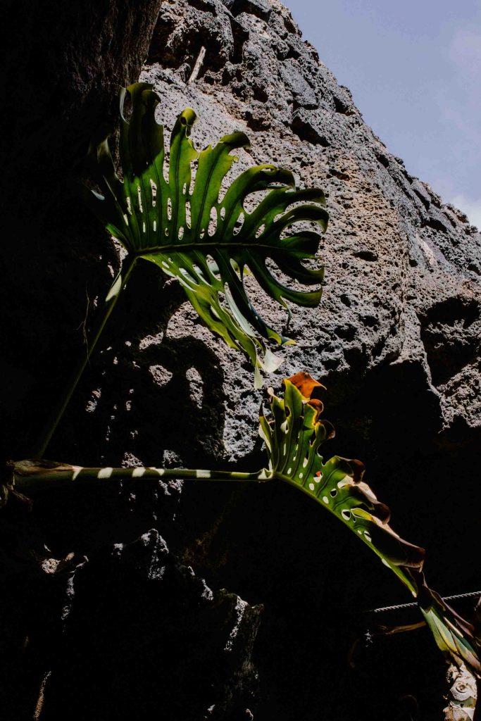 Fondation Cesar Manrique | Voyager en van aux Canaries | Découvrir Lanzarote en famille en mode slowlife | La mariée sous les étoiles